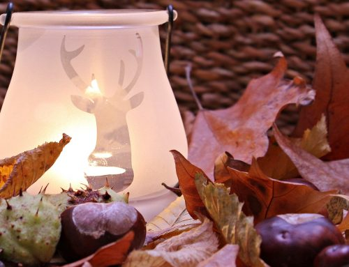Autumn Decor You'll Fall For